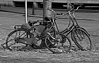 dutch bicyles ...