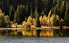 Herbst am Prebersee
